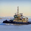 Tug Boat Svitzer Nari. by Lilian Marshall