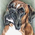 The Boxer Portrait by Nicole Zeug
