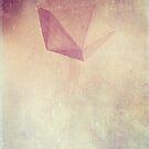 Sacred Geometry 1 by Aaran Bosansko