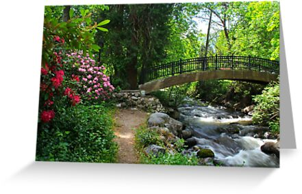 Lilith Park by Barbara  Brown