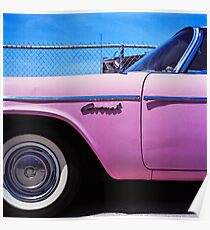 Pink Coronet Poster