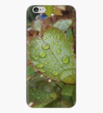 Dew drops on a Leaf iPhone Case