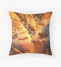 sunset in stone Throw Pillow