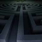 Tree into the maze by jordygraph