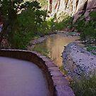 Zion National Park by Nancy Richard