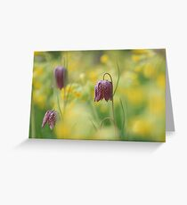 Meadow in bloom at Downton Abbey Greeting Card