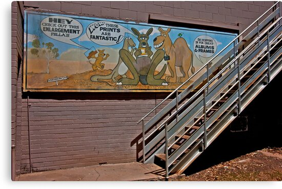 Aussie Critters Stairway by phil decocco