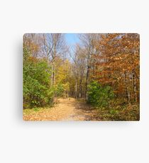 Fall at the Arboretum Canvas Print