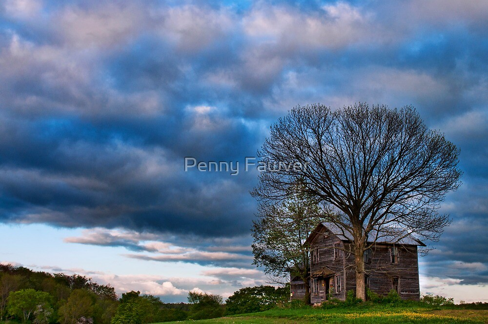 Lonely house by Penny Fawver