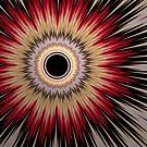 Porcupine  by Stephanie Hymas