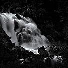Upper Fallen Leaf Falls by Jeffrey  Sinnock