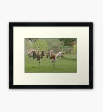 """Yaaayyy ~Spring Is Here !"" Framed Print"