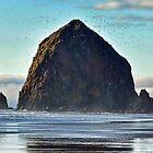 haystack rock, early spring by Matt Goldberg
