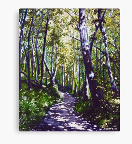 'Summer Woods (Moses Cone State Park, NC)' Canvas Print