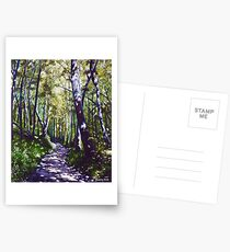 'Summer Woods (Moses Cone State Park, NC)' Postcards