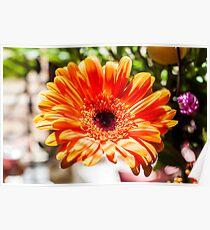 The Orange Flower Poster
