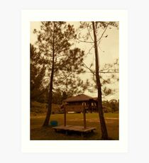 House of Bengkirai Forests Borneo Art Print
