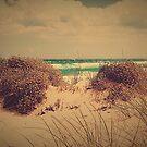 Beach Scrub by Leanne Robson