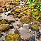 Babbling Brook by Stephen Knowles