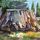 Sequoia by Filip Mihail