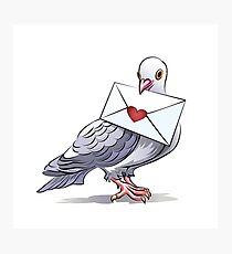 Pigeon with letter Photographic Print
