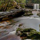 Knyvet Falls. by Julie  White