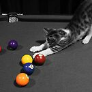 Purrrfect Game by evvy84