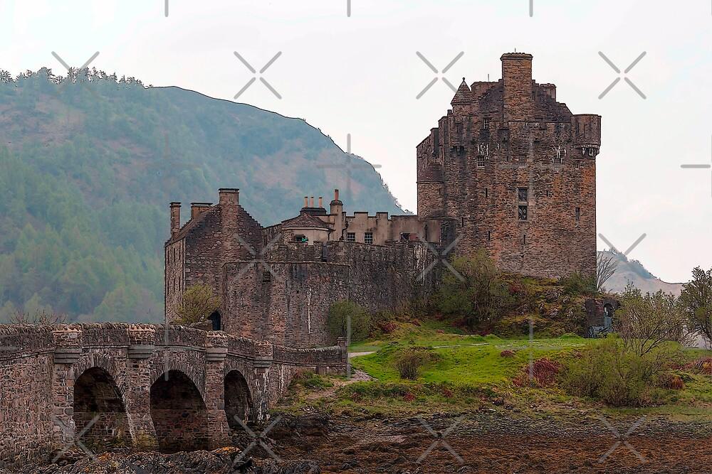 Cartoon - Structure of the Eilean Donan Castle with a stone bridge by ashishagarwal74