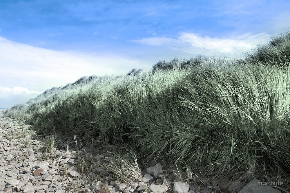Beal rocks and sand dunes by morrbyte