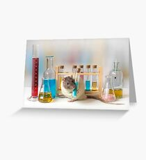 Working at the Laboratory Greeting Card