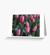 Field of Tulip Dreams Greeting Card