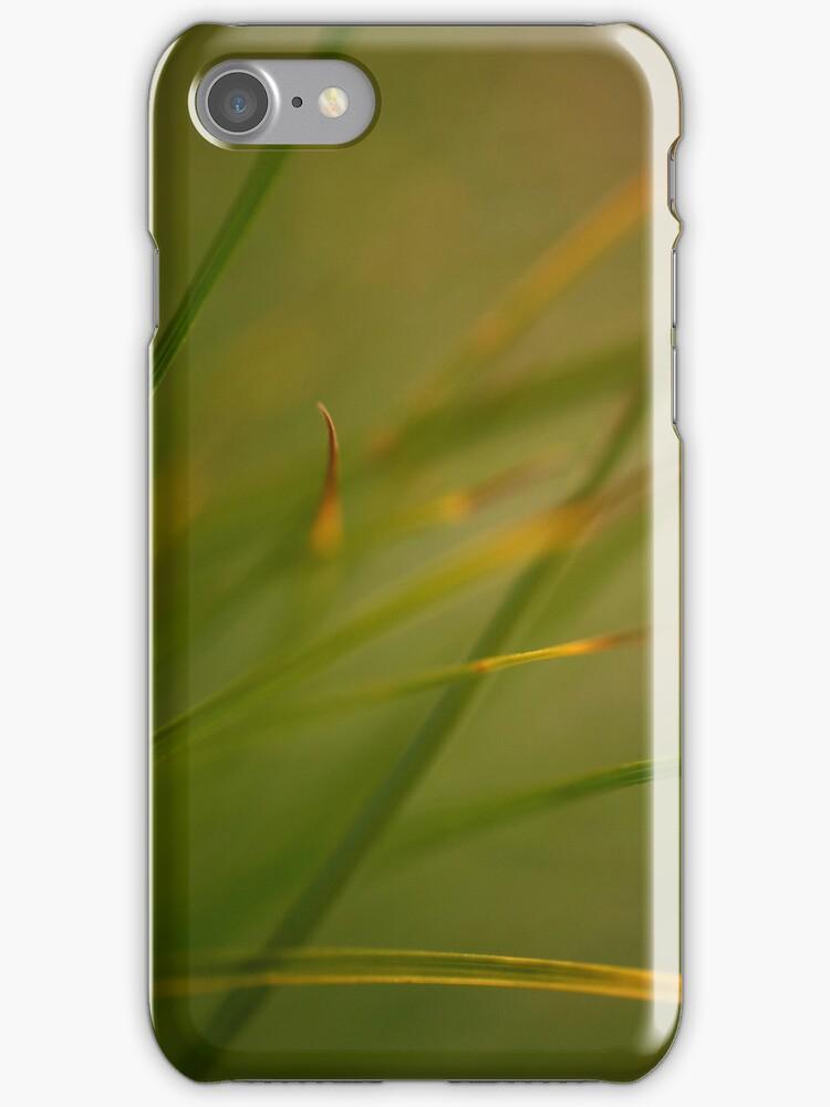 Silken Grass by pusztafia