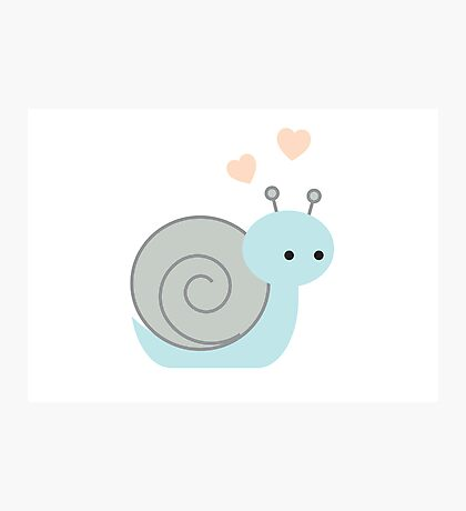 Lovely Snail Photographic Print