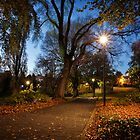 Early Morning in St David's Park, Hobart, Tasmania #2 by Chris Cobern