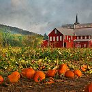Country Pumpkins by Lori Deiter