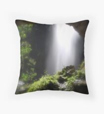 Protesters Falls Throw Pillow