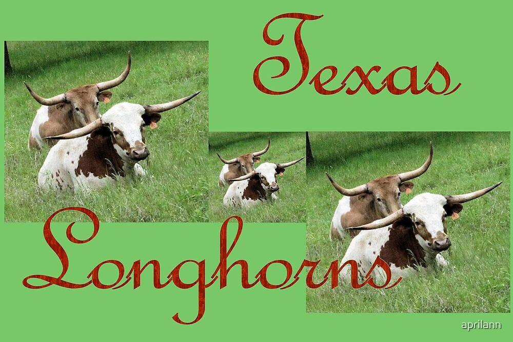 Texas Longhorns Collage by aprilann