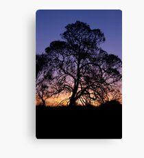 Ayer's Rock Sunset Canvas Print