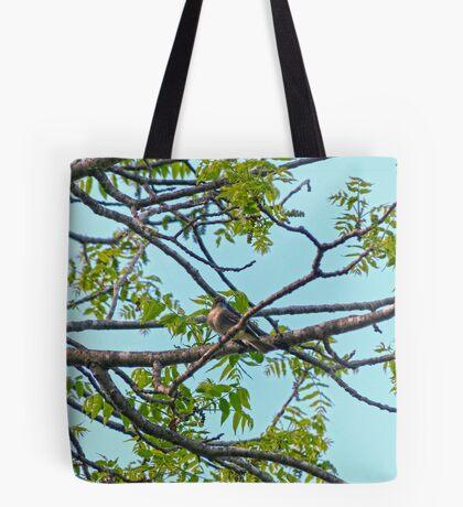 Little Bird in Black Walnut Tree Tote Bag
