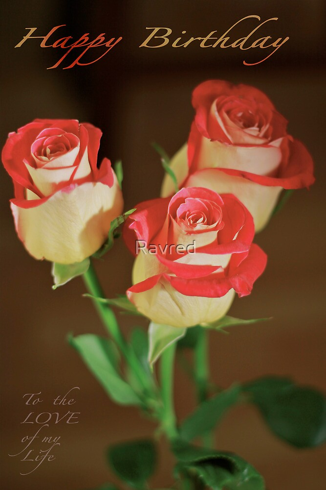 Roses by Ravred