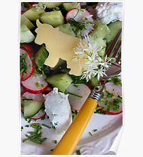 Housemade Cheese and Wild Garlic Blossom Dressing With Salad Poster