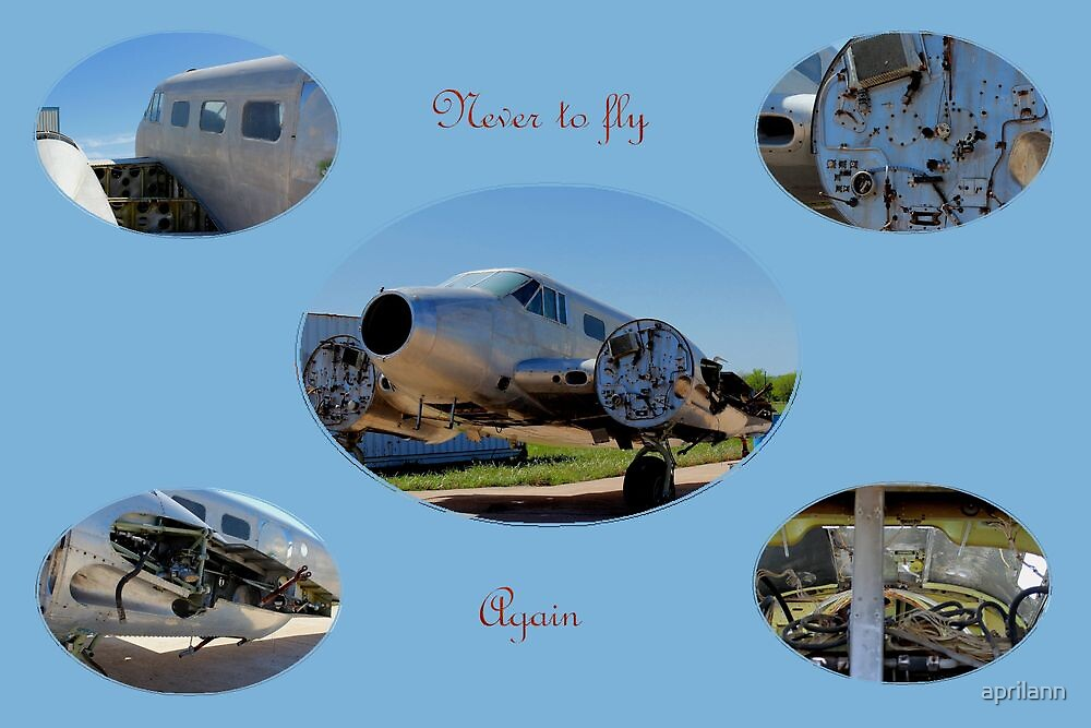 Never to Fly Again by aprilann