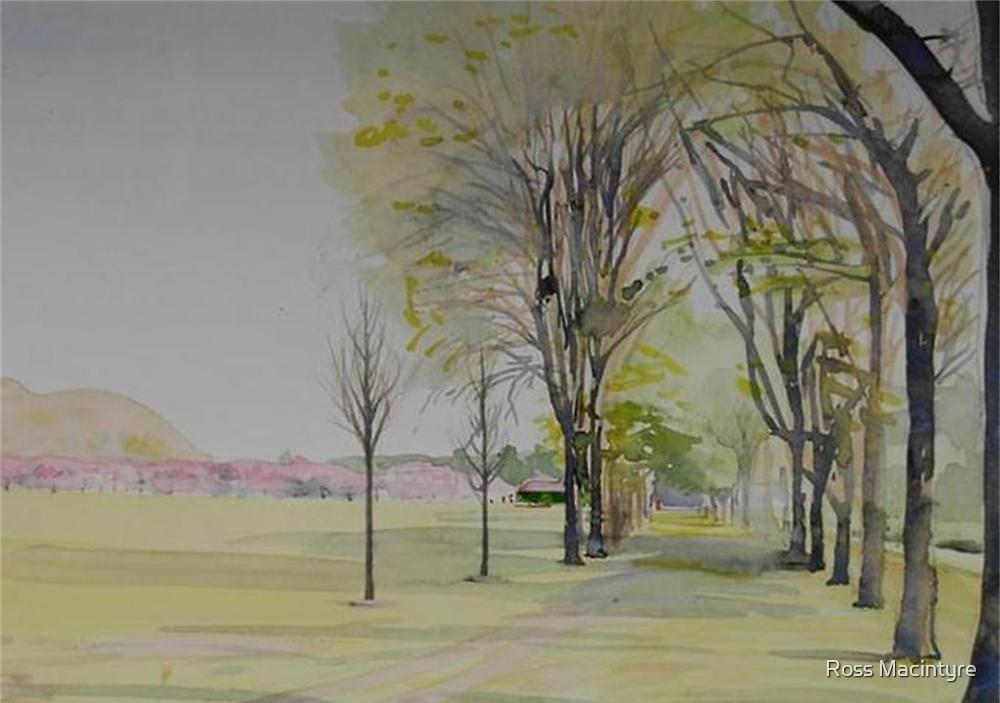 Edinburgh Meadows by Ross Macintyre