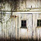 Rural Windows by Amanda White
