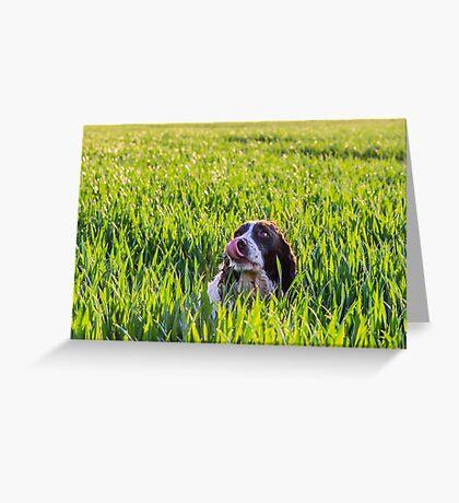 Sluurp Greeting Card