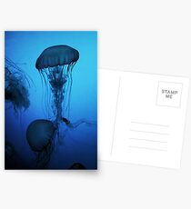 Portrait of a Jellyfish- Blue Postcards