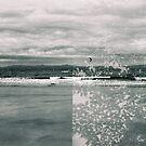 Film Swap, USA/Scotland #33 by Mandy Kerr