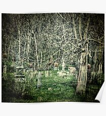 Graveyard With A Past Poster
