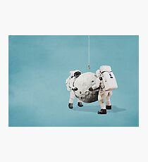 Hanging the moon Photographic Print