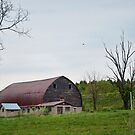 Another PA barn by Penny Fawver